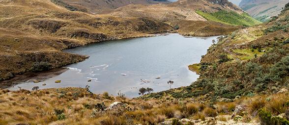 Proyecto humedales Ñucanchi Turupamba
