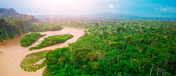 Proyecto Territorio indígenas amazónicos: reconociendo y respondiendo a los riesgos de la pérdida de bosques