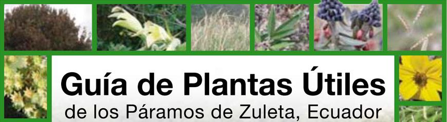 guiadeplantas-utiles-zuleta01