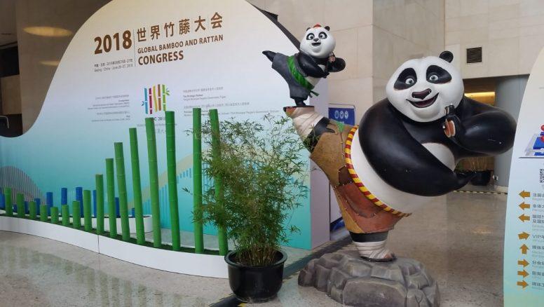 bambu congresws
