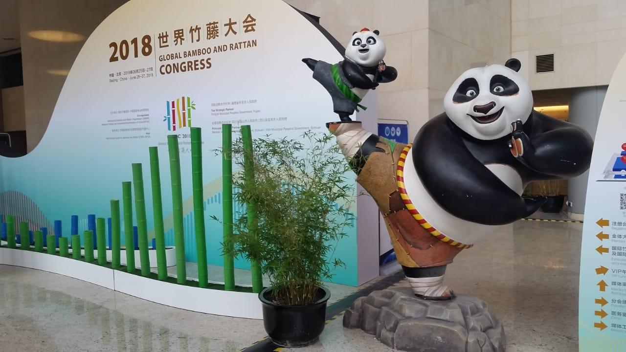 Ecociencia presente en Global Bamboo and Rattan Congress en Beijing, China
