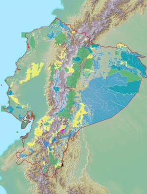 Mapeo socioambiental Ecociencia
